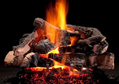 Fire burning log