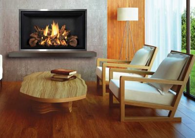 Mendota FV42 fireplace